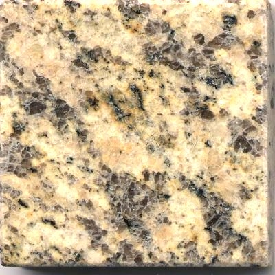 GY002 Tiger Skin Yellow Granite Sample