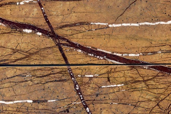 Brazilian Marble : Rain Forest BrownSample